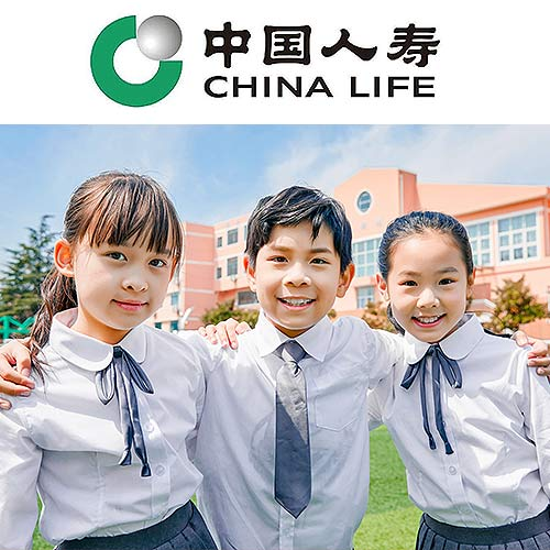 中国人寿幼儿学平险(黄金版)