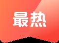 月博app下载保保险网